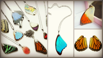 Resin Butterfly Wings Craft